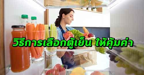 วิธีการเลือก ตู้เย็น ให้คุ้มค่า ตอบโจทย์ความต้องการ